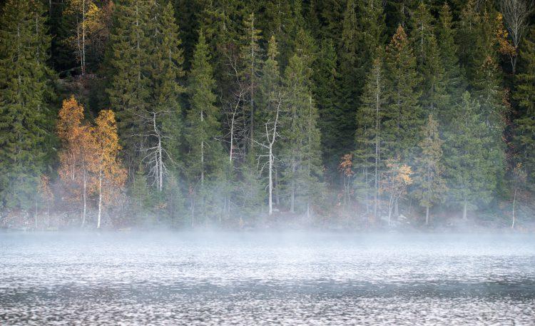 Aursjøen – 13-14 oktober 2015