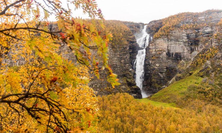 Seinhøsten i Nord-Troms og Finnmarksvidda – Norge på langs del 17