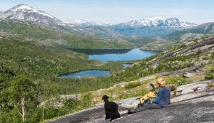 Jeg og Frøya i Nordlandsfjellet.