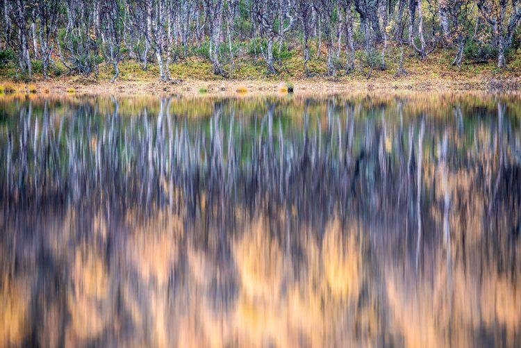 Høstferien 2015 – Røros Hyllingdalen 2-3 oktober 2015